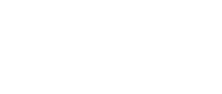 Текст: