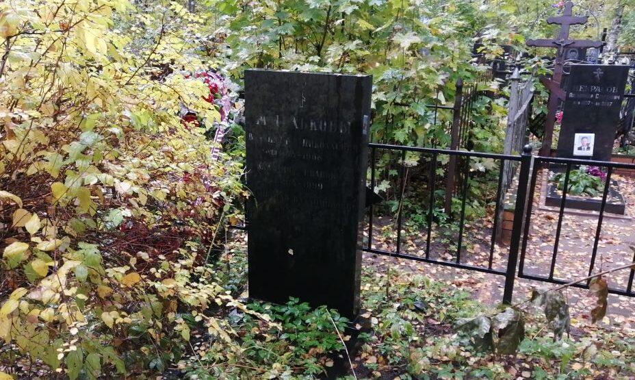 Памятник на могиле Жмелькова